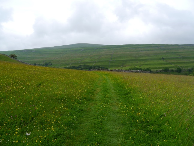 Heading to Cray with Buckden Pike ahead