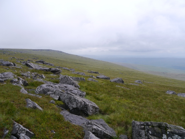 Looking towards the top of Great Whernside