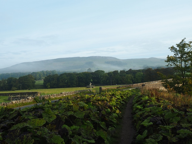 The view across the valley to High Clint as I approached Haylands Bridge