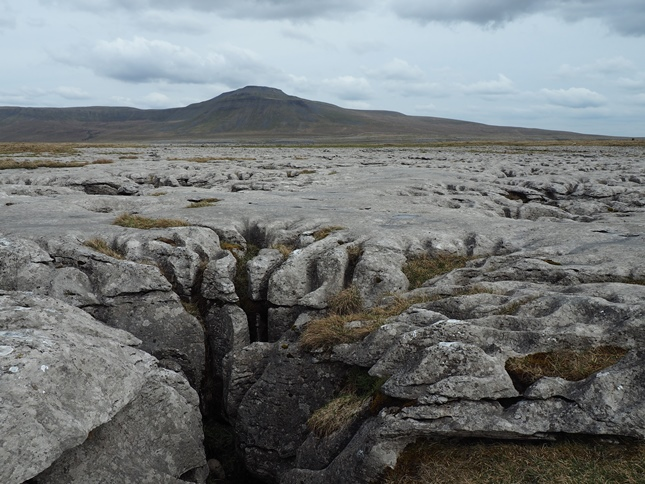 A pot hole on Scales Moor with Ingleborough in the distance