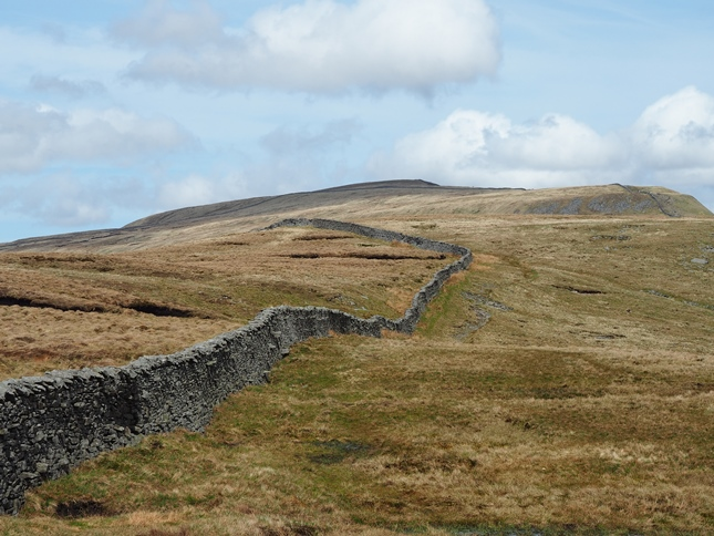 Looking back along the ridge wall towards Whernside