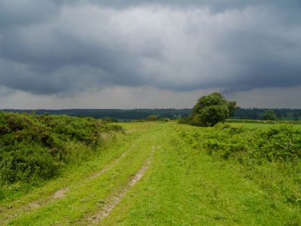 Dark skies gathering over Roomer Common