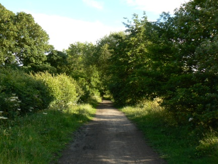The Cinder Track follows the old Scarborough to Whitby train line
