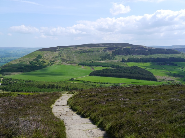 Cringle Moor from Carlton Moor