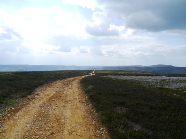 The path leading across Urra Moor towards Seave Green