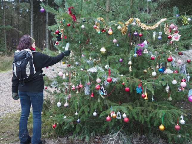 The large decorated Christmas tree on the track between Langsett Reservoir and Thickwoods Lane